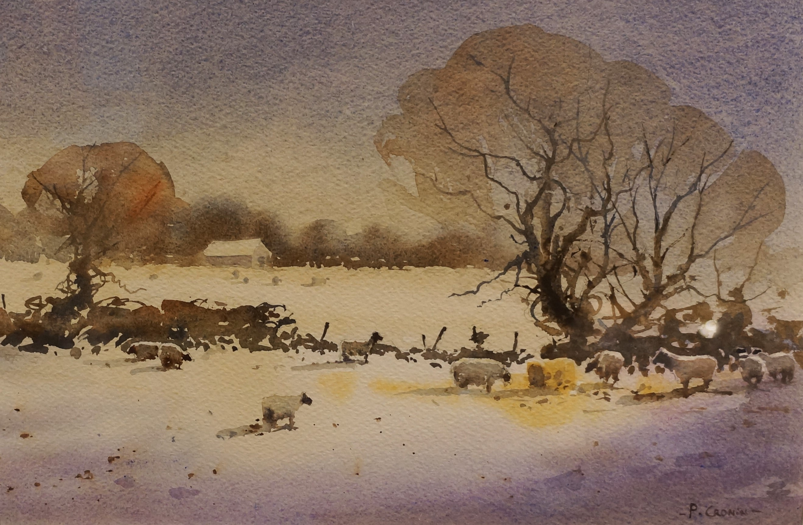 Peter Cronin Pure Watercolour Common Ground By Roberta